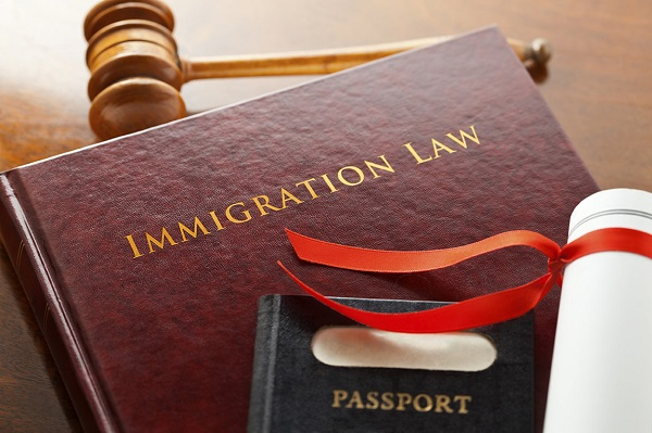 What Should You Expect From Immigration Lawyers?