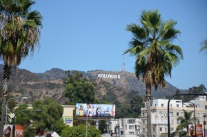 The-Hollywood-Hills