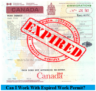 My Visa Expired, What Should I Do? Am I Out of Status? Did I