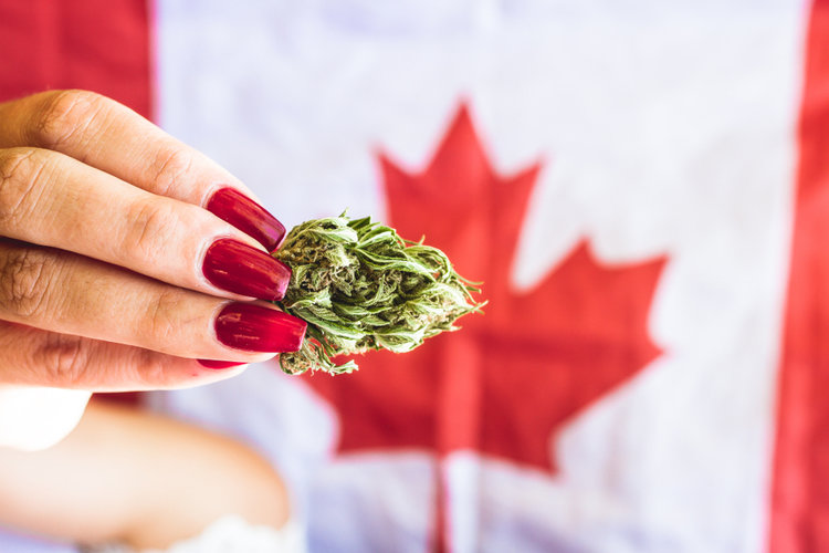 Border Security Canada Legalized Weed