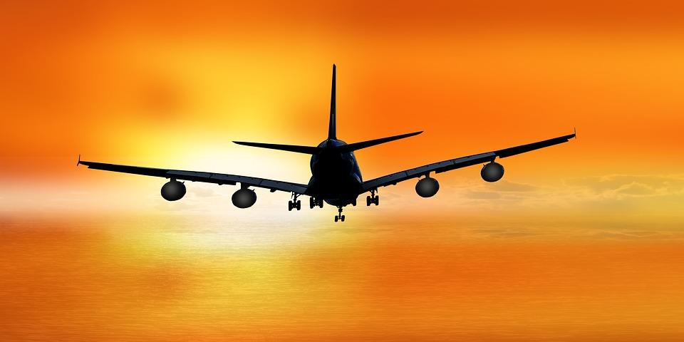 Travel International Student