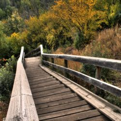 Staircase_North_Saskatchewan_River_Valley_Edmonton_Alberta_Canada_01